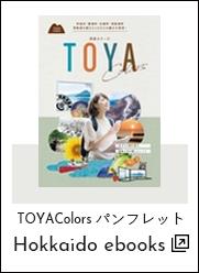 TOYA Colorsパンフレット